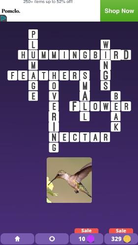 Stuck On One Clue Crossword Examine Pics To Solve Crosswords