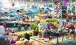 Marina Boardwalk -new